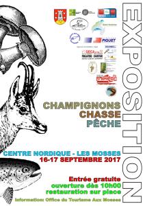 A5_CCP Expo affiche 2017